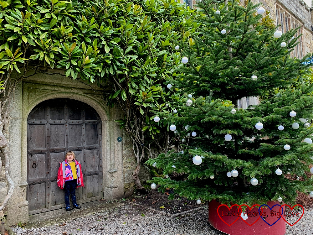 Sophie standing in front of a large door at Lanhydrock with greenery around the door and a big Christmas tree next to her