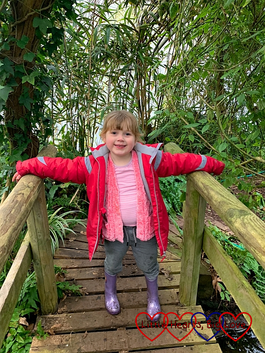 Sophie standing on the bridge in the rainforest zone at Iver Environment Centre