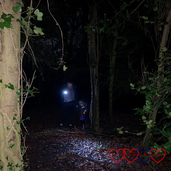 Sophie and Daddy in the woods at night, holding torches
