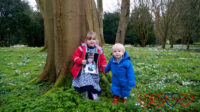 Sophie standing leaning against a tree, holding a photo of Jessica in front of her, and Thomas's hand as he stands next to her with a field of snowdrops surrounding them