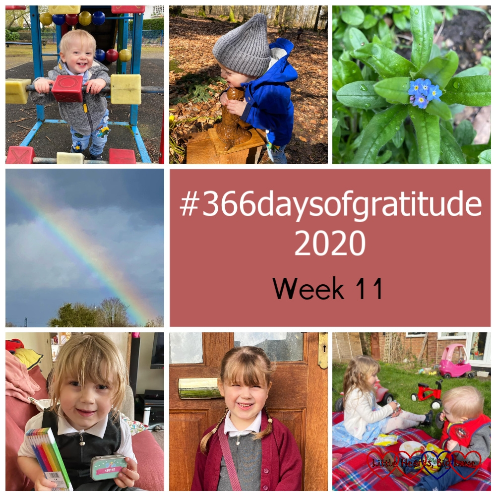 "Thomas at the park; Thomas hugging Jessica's statue at her forever bed; a forget-me-not growing in my garden; a rainbow; Sophie holding a box of coloured pencils and a tin with her name on; Sophie outside the house; Sophie and Thomas sitting in the garden having a picnic - ""#366daysofgratitude 2020 - Week 11"""