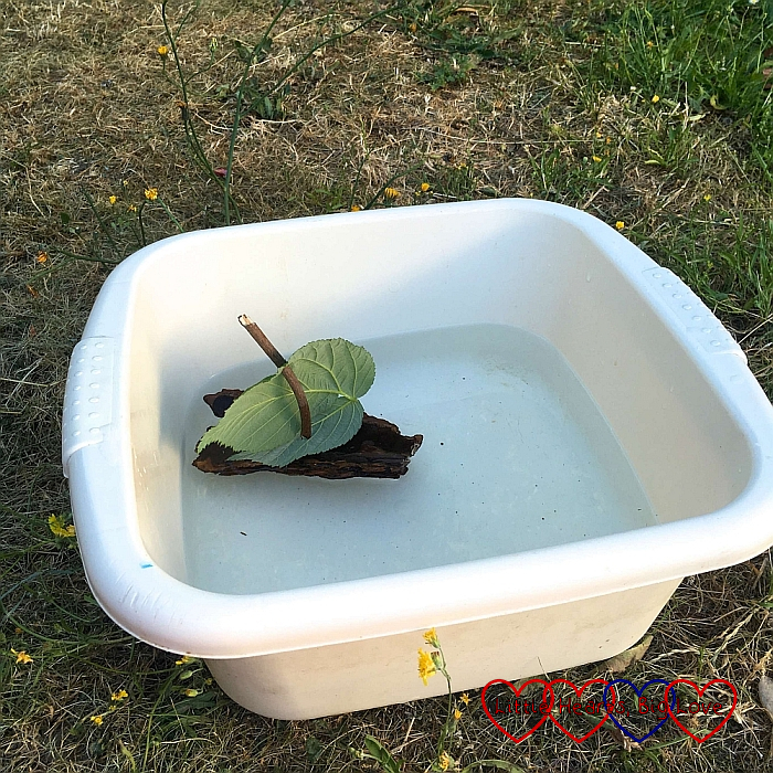 A bark boat floating in a washing up bowl of water