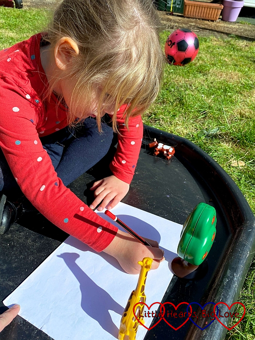 Sophie doing a shadow drawing of a Playmobil tree and a giraffe
