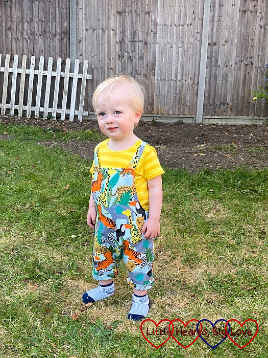 Thomas wearing a yellow top with jungle animal print dungarees