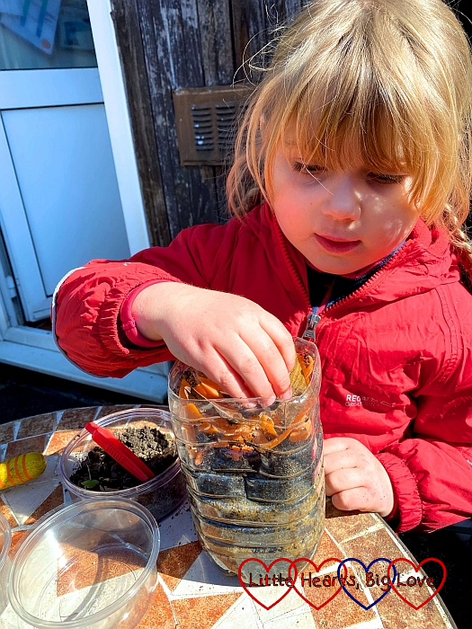 Sophie putting dead leaves and vegetable peelings on top of the worms in the plastic bottle wormery