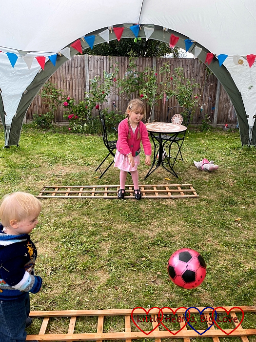 Sophie throwing a ball towards the edge of a trellis laid on the ground