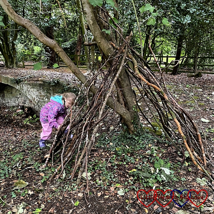 Sophie building a den in the woods