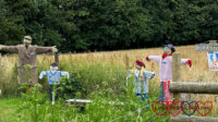 A family of scarecrows on the 'Dig for Victory' allotment at Chiltern Open Air Museum