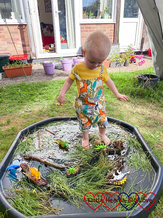 Thomas paddling in a tuff tray filled with sticks, bark, grass and water and a few toy dinosaurs