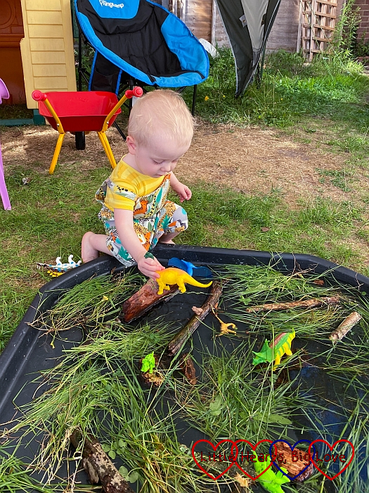 Thomas playing with a toy dinosaur in a tuff tray filled with sticks, bark, long grass and water