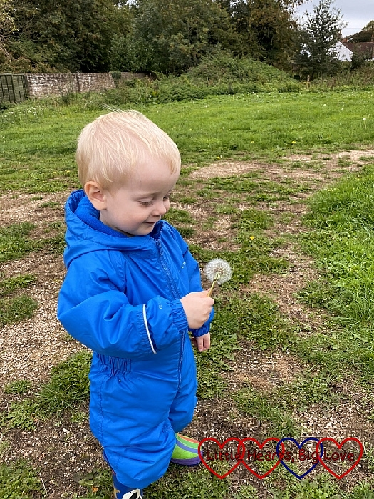Thomas holding a dandelion clock
