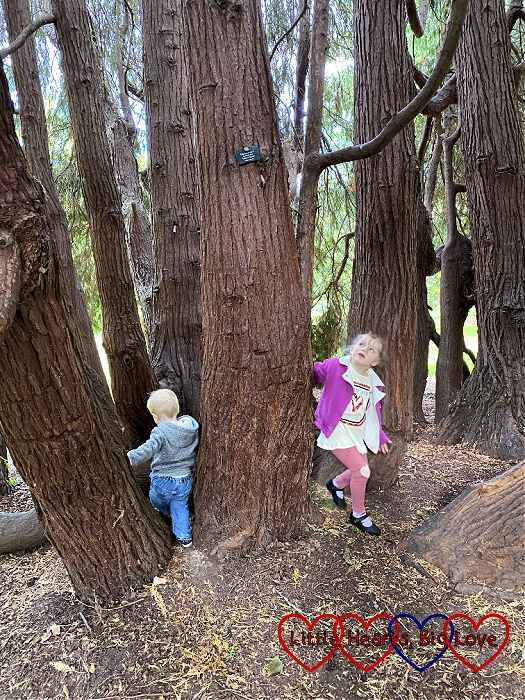Thomas and Sophie playing hide 'n' seek amongst some trees