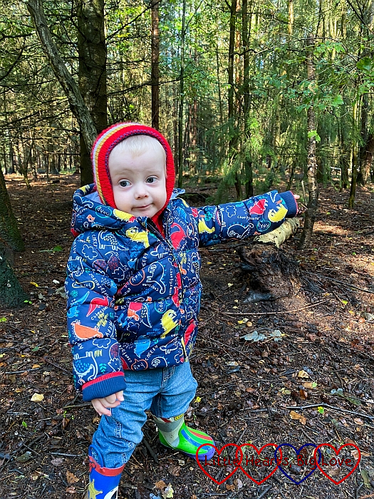 Thomas pointing at the trees in Black Park