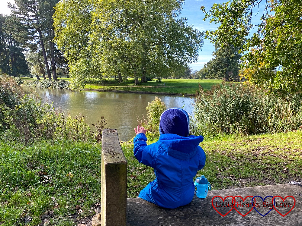 Thomas sitting on a bench looking at the lake in Langley Park