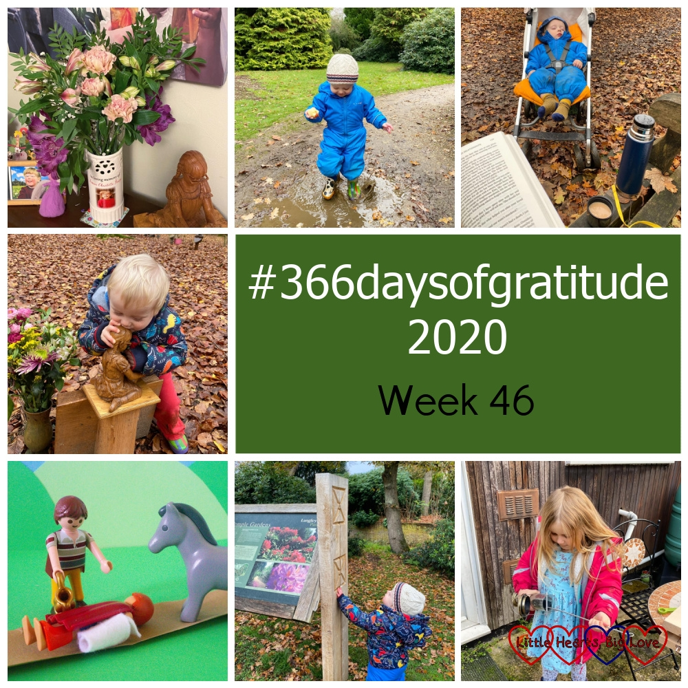 """Flowers in a vase; Thomas splashing in a puddle; Thomas asleep in his buggy seen from a bench with a book and flask of tea in the foreground; Thomas kissing the wooden carving of Jessica at her forever bed; a Playmobil scene from the parable of the Good Samaritan; Thomas looking at a sign in Langley Park; Sophie cleaning a bird feeder - """"#366daysofgratitude 2020 - Week 46"""""""