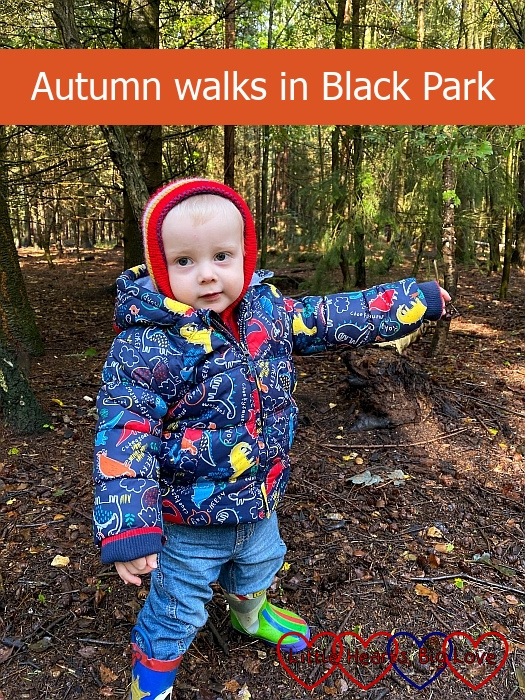 "Thomas wrapped up warm for a walk in Black Park – ""Autumn walks in Black Park"""