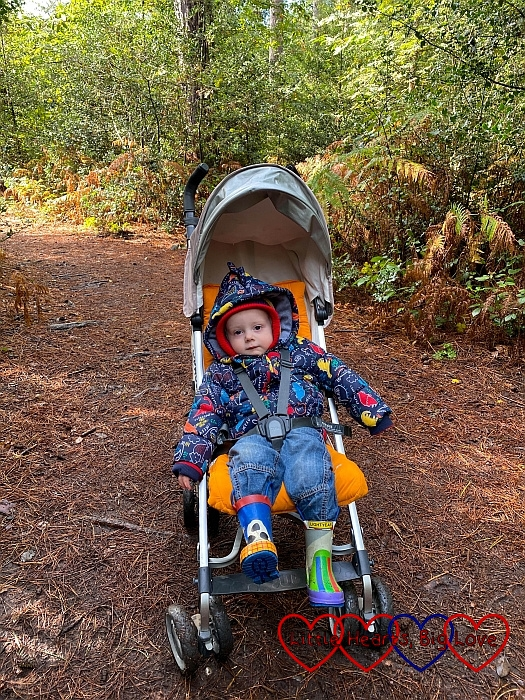 Thomas in his buggy at Black Park
