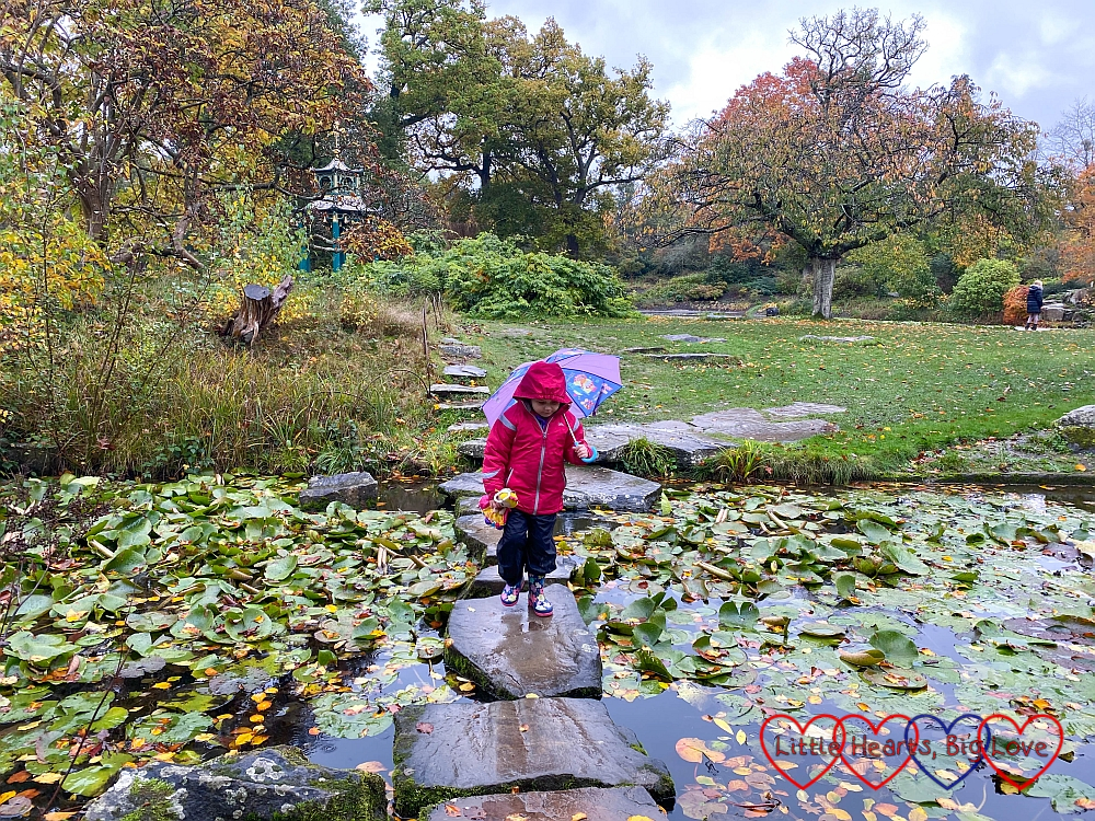 Sophie walking across stepping stones in the water garden at Cliveden