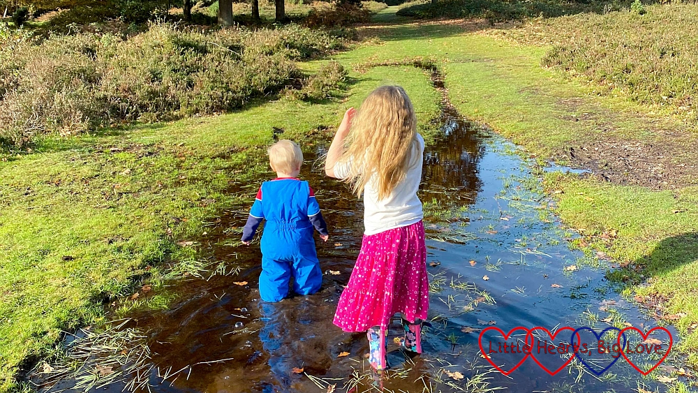 Thomas and Sophie wading through a big puddle in the middle of some heathland