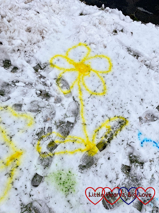 A flower drawn in the snow
