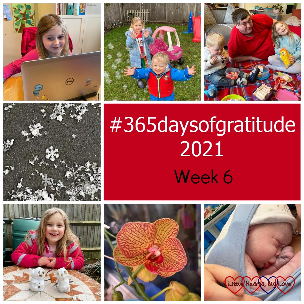 """Sophie having a Zoom chat with a friend; Sophie and Thomas playing with bubbles in the garden; Hubby, Sophie and Thomas having a carpet picnic; a close-up shot of a snowflake; Sophie with her mini snowmen; a yellow and pink orchid on my windowsill; my new great-nephew - """"365daysofgratitude 2021 - Week 6"""""""