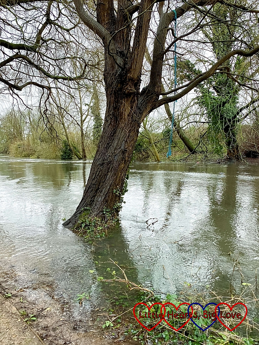 A view over the river with flooding on the footpath