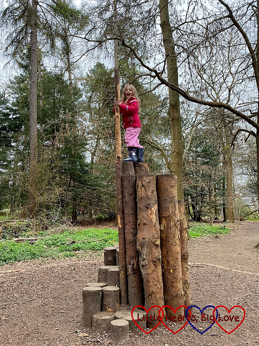 Sophie at the top of a climbing tower made of logs