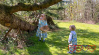 Sophie finding Easter eggs in Grandma's garden with Thomas looking on