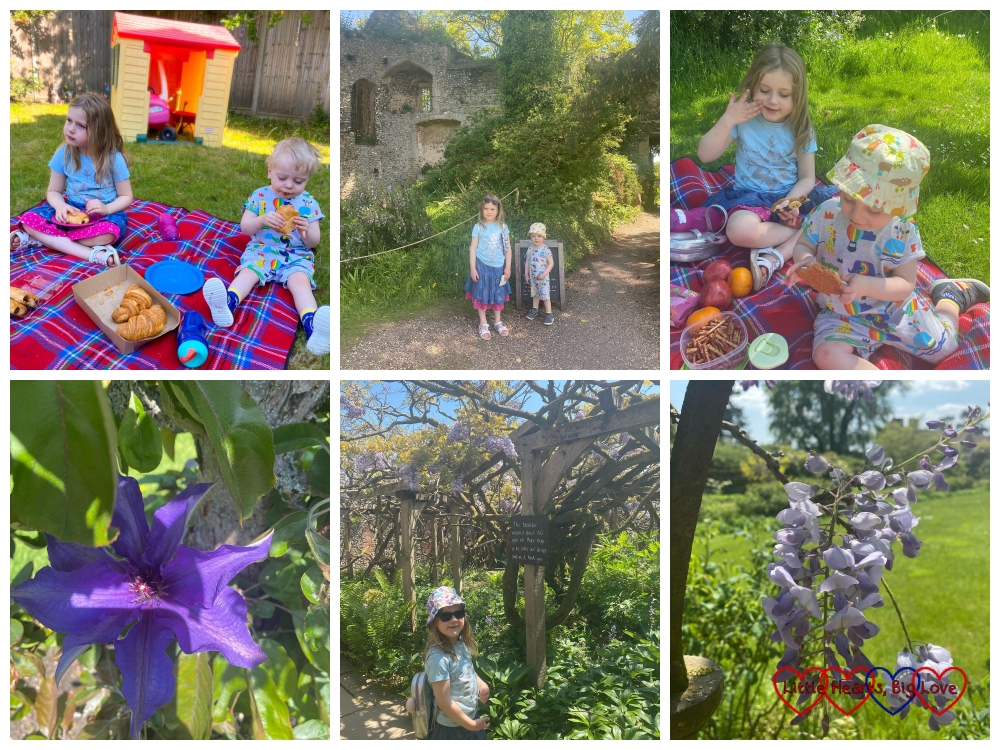 Top (l-r): Sophie and Thomas having a breakfast picnic; Sophie and Thomas at Grey's Court; Sophie and Thomas having a picnic lunch. Bottom (l-r) a purple flower, Sophie in the walled garden at Greys Court; wisteria flowers