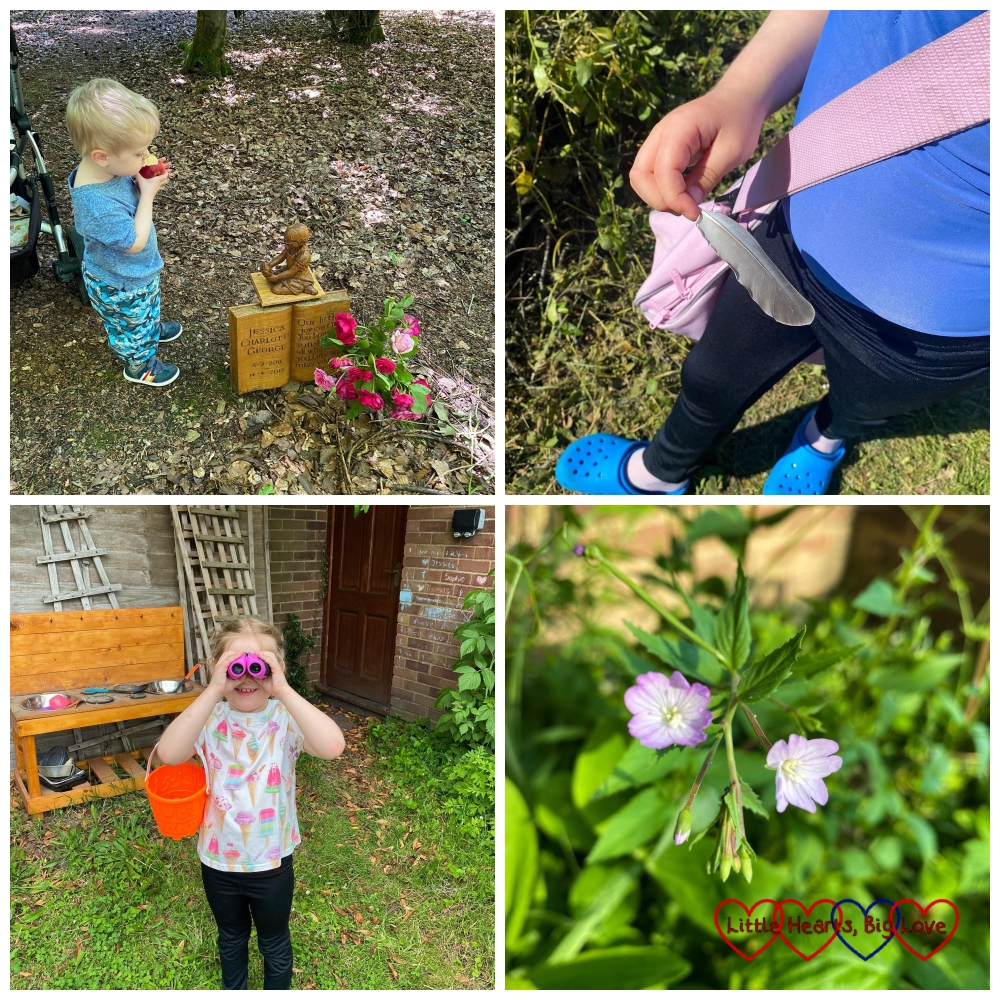 Thomas at Jessica's forever bed; Sophie with a grey feather; Sophie looking through binoculars; a spotted cranesbill flower