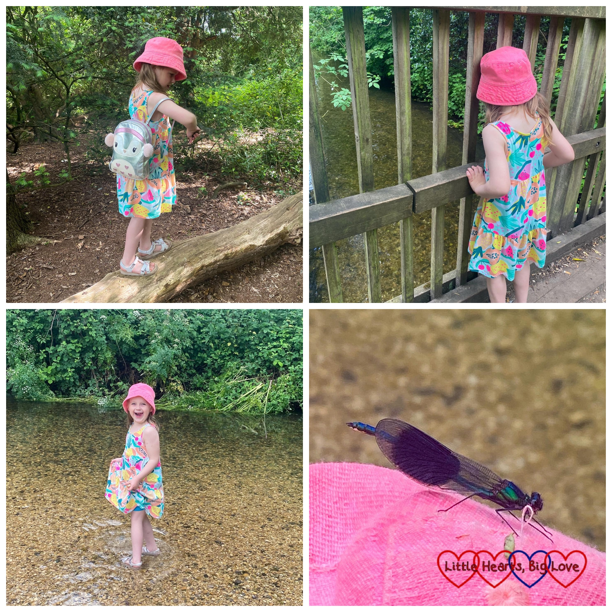 Sophie walking along a fallen log; Sophie playing Poohsticks on the bridge; Sophie paddling in the stream; a banded demoiselle on Sophie's sun hat