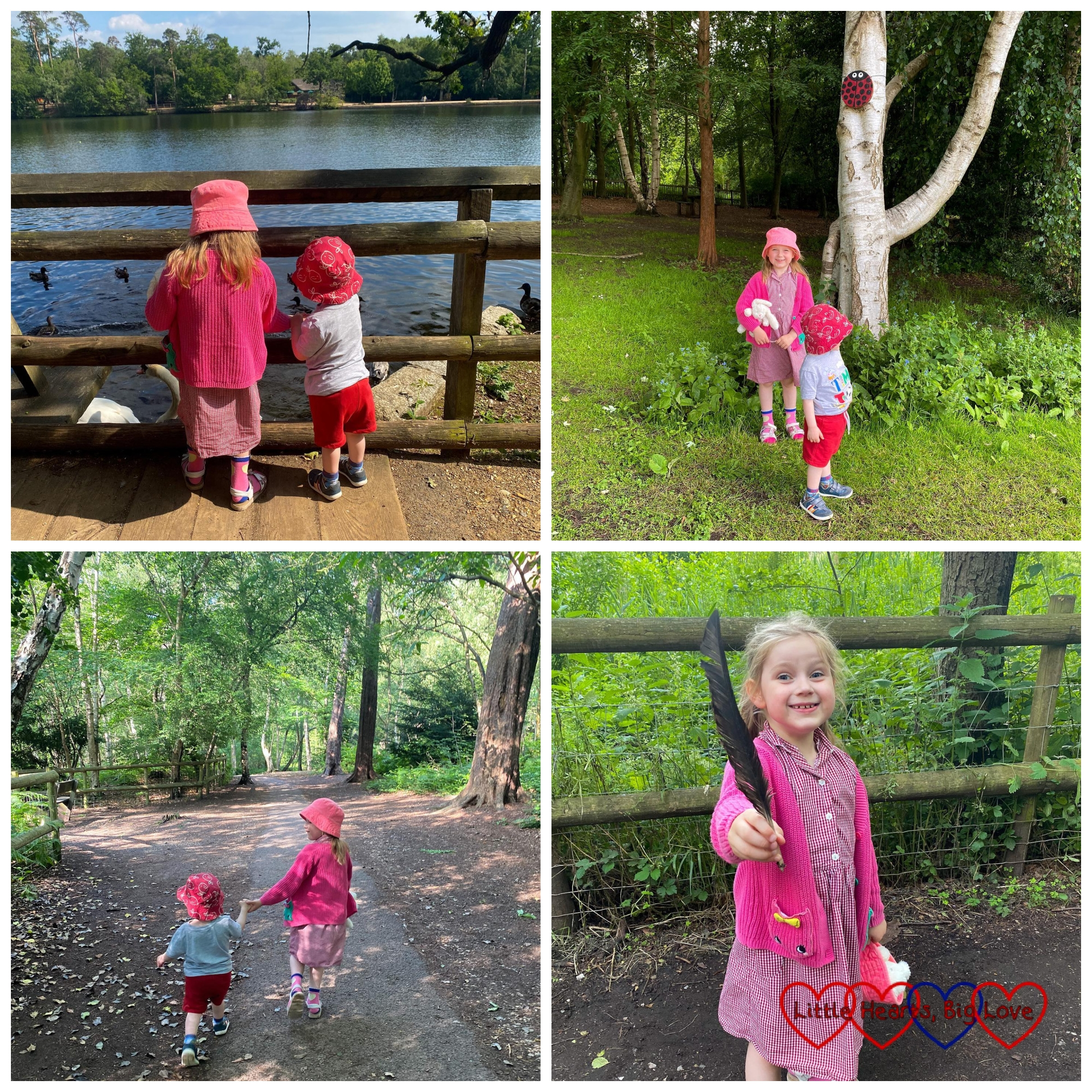 Sophie and Thomas feeding the ducks at Black Park; Sophie and Thomas standing in front of a birch tree with a giant wooden ladybird above them; Sophie and Thomas walking hand-in-hand through the woods; Sophie holding a large black feather