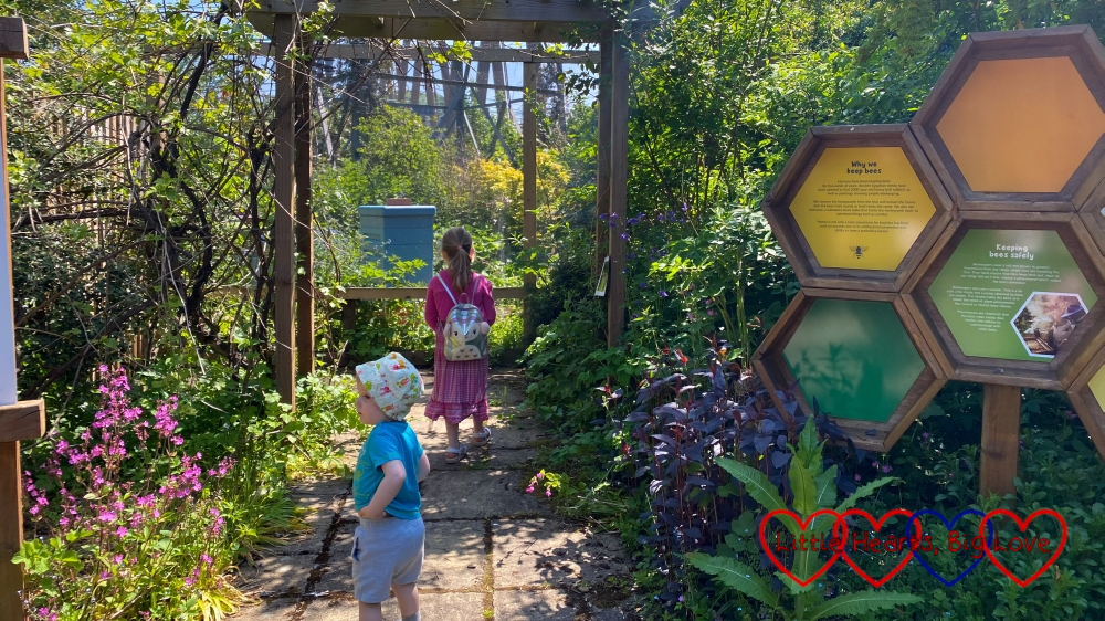 Sophie and Thomas near the beehives at Iver Environment Centre