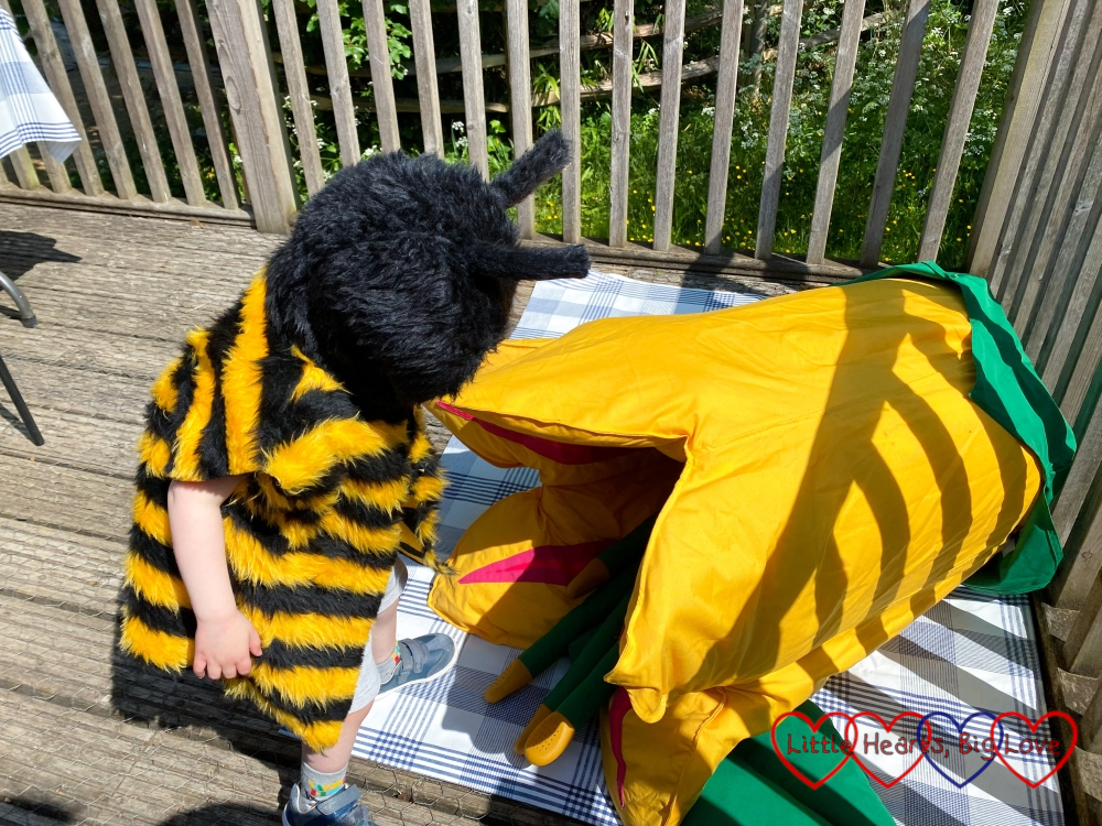 Thomas dressed as a bee next to a giant fabric flower