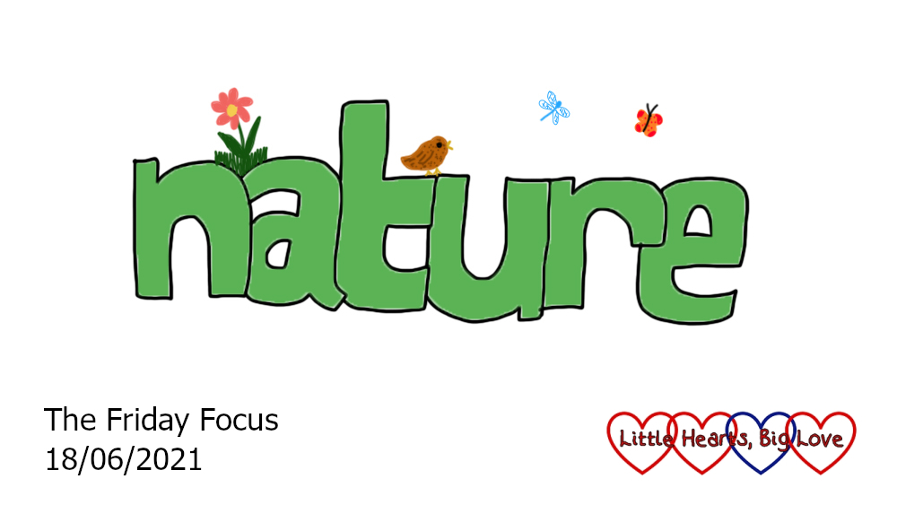 The word nature in green with doodles of a flower, a bird, a dragonfly and a butterfly around it
