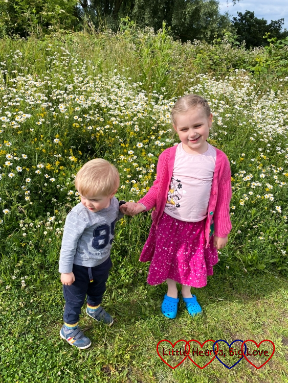 Sophie and Thomas holding hands in front of wildflowers