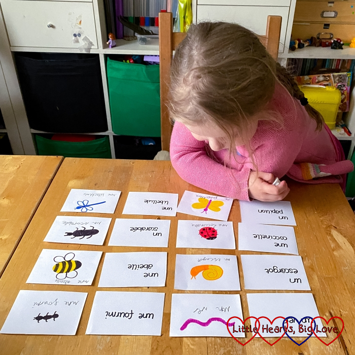 Sophie looking at flashcards and learning French words for insects
