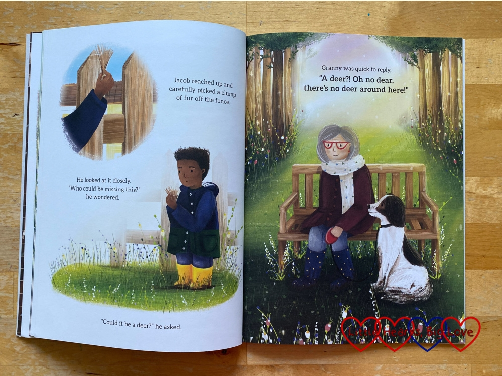 """Two pages of the book 'There's No Deer Around Here' with Granny telling Jacob """"A deer?! Oh no, dear, there's no deer around here!"""""""