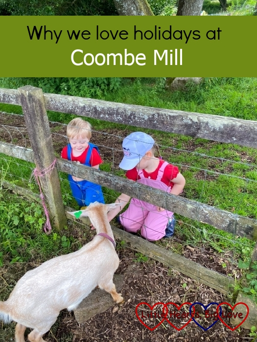 """Thomas and Sophie feeding the goats at Coombe Mill - """"Why we love holidays at Coombe Mill"""""""